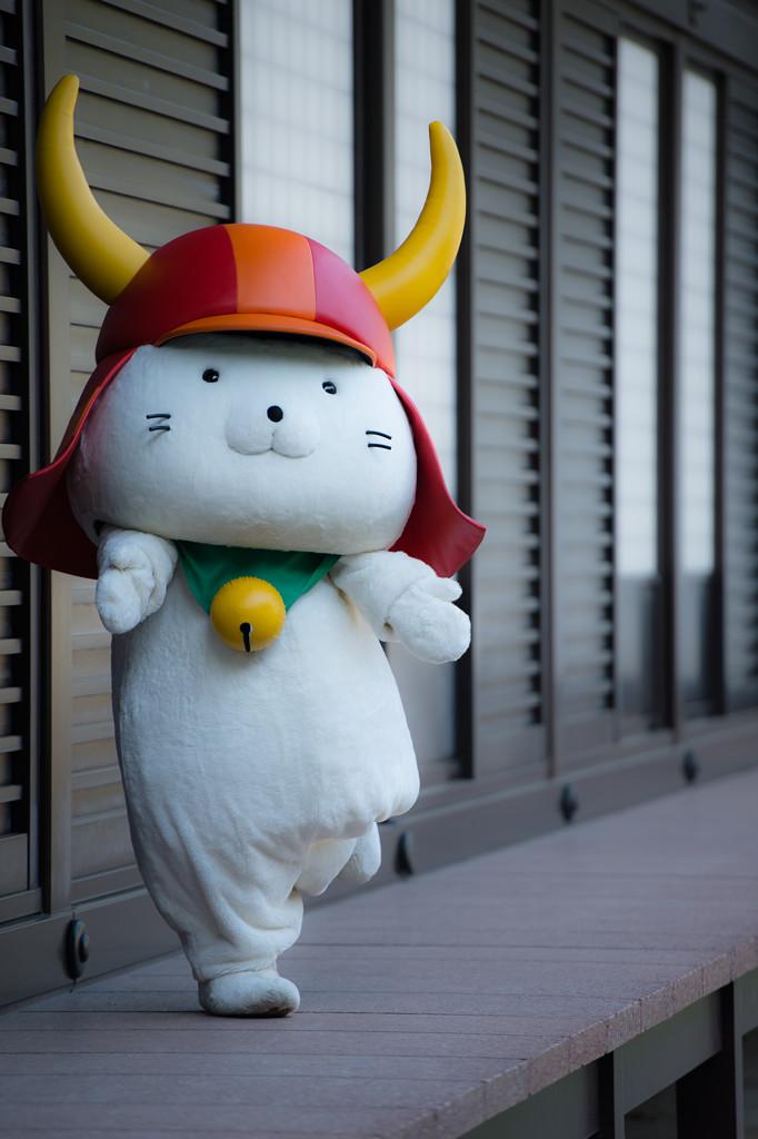 彥喵(ひこにゃん) 圖片取自http://photozou.jp/photo/show/296250/190465932