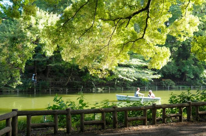 圖片取自https://www.flickr.com/photos/saname777/3865525526/