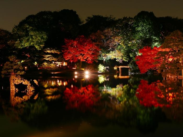 六義園楓紅。圖片取自:http://ppt.cc/o1kQc