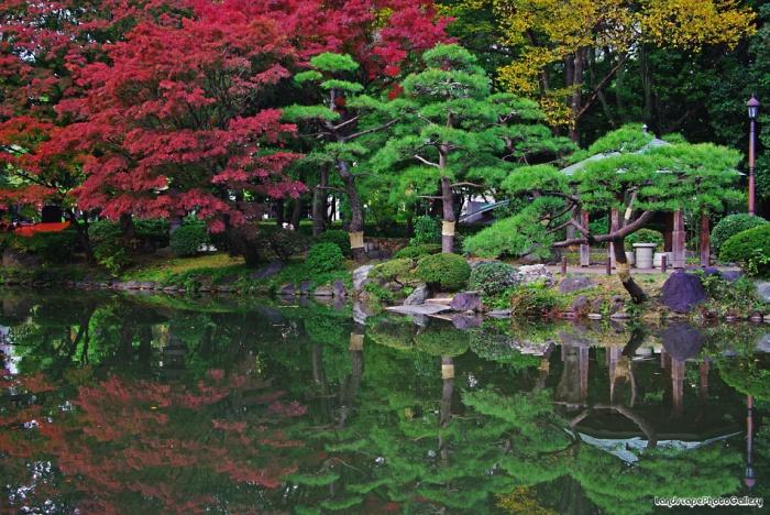日比谷公園楓紅,圖片取自:http://ppt.cc/IEg6J