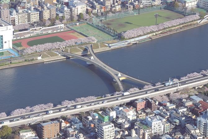 201702015_sakuramatsuri008